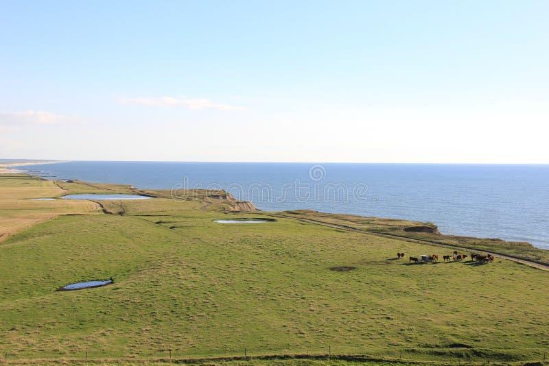 Beach near Bovbjerg Fyr lighthouse. Photo was taken in autumn near Bovbjerg Fyr, Denmark. North Sea Coast royalty free stock image