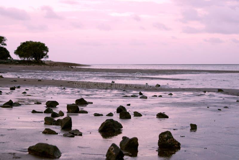 Beach near Brisbane/Australia stock image