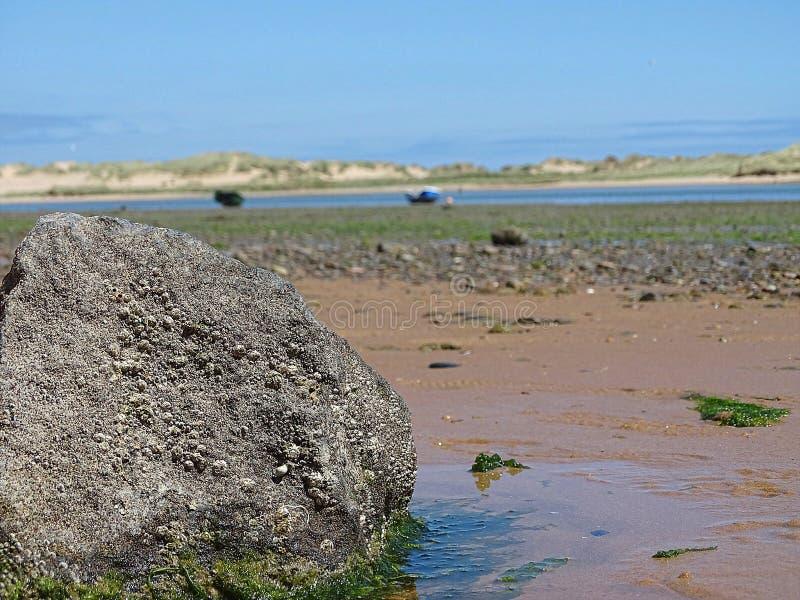 At Beach at Newburgh stock images