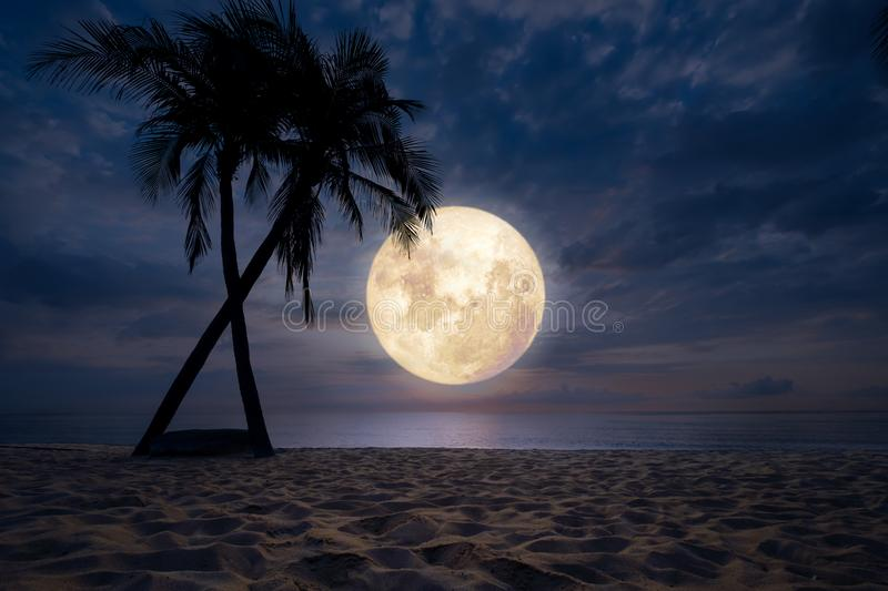 Download Beach In Night Sky Full Moon Stock Photo