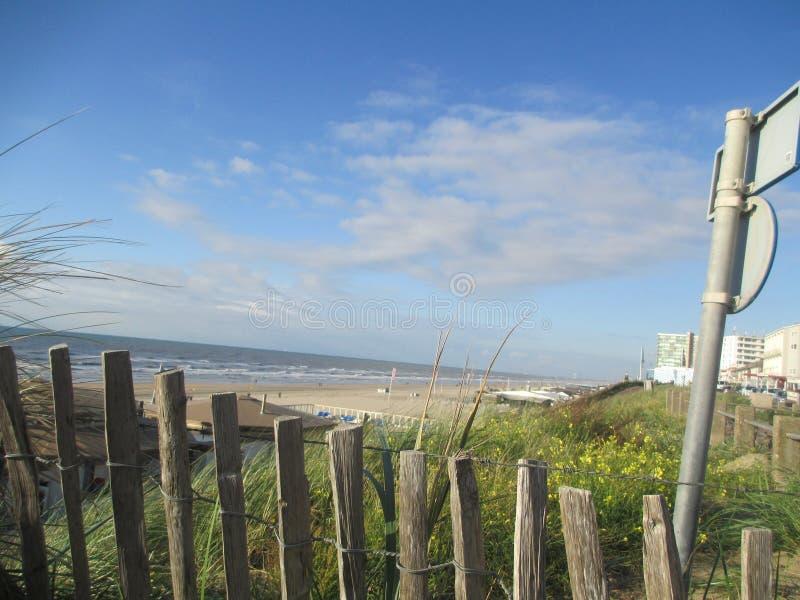 Beach, Zandvoort, Netherlands. Beach at the North Sea, Zandvoort, Netherlands royalty free stock photography