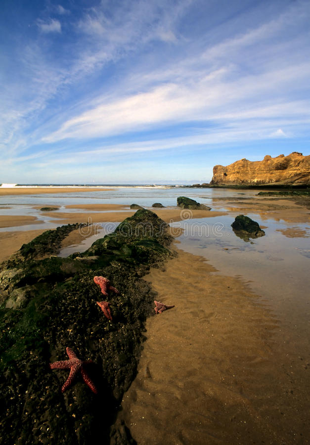 Download Beach In Northern Oregon Royalty Free Stock Images - Image: 9523169