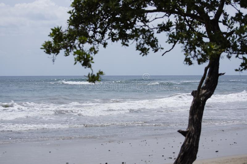 Beach Nosara in Guanacaste Costa Rica. Defined by its attitude and uncontaminated coastal lines, Nosara is a small town famous for its yoga and surfing. Thank stock image
