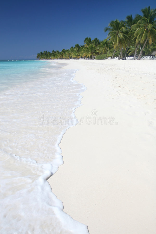 Download Beach Ocean Vacation stock photo. Image of rest, escape - 8754942