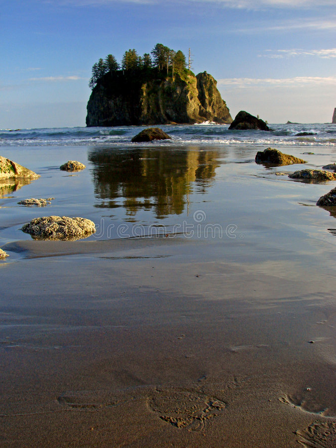 Download Beach, Olympic National Park Stock Photo - Image: 3434542