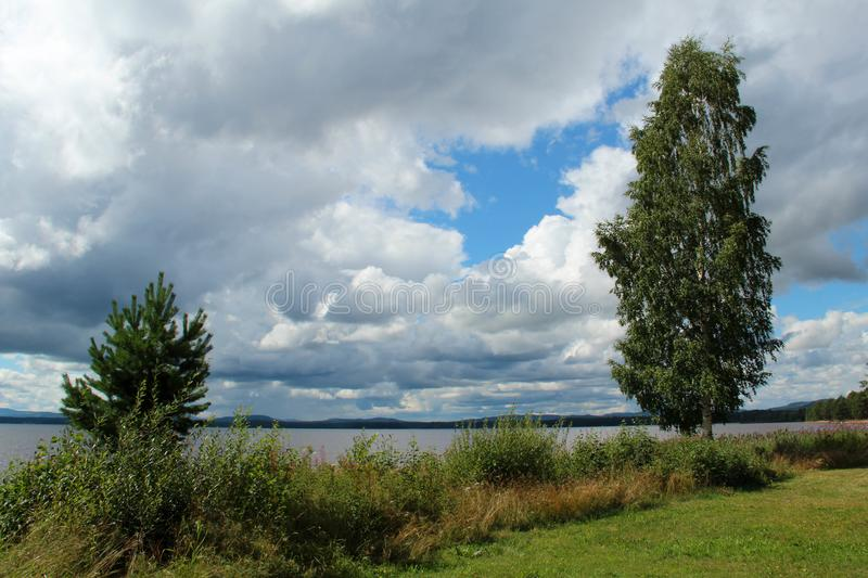 Beach by Orsa lake in Dalarna, Sweden, in August. Beach by Orsa lake in Dalarna, Sweden, in August on a cloudy day royalty free stock images