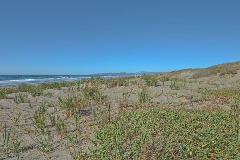 Beach on Pacific coast in Northern California stock photo