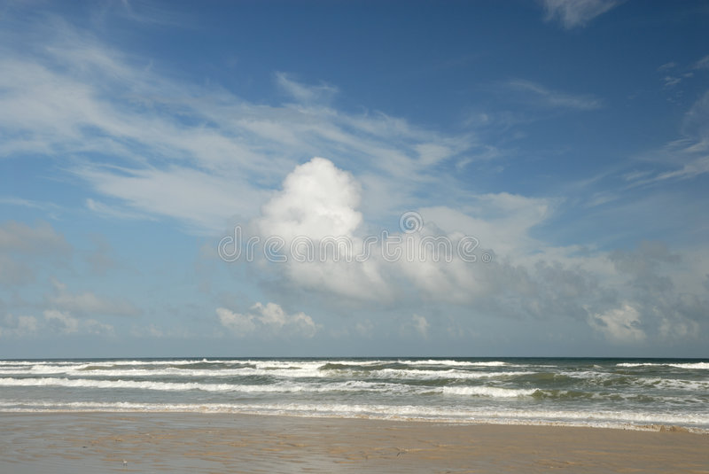Download Beach On Padre Island, TX USA Stock Image - Image: 6920411