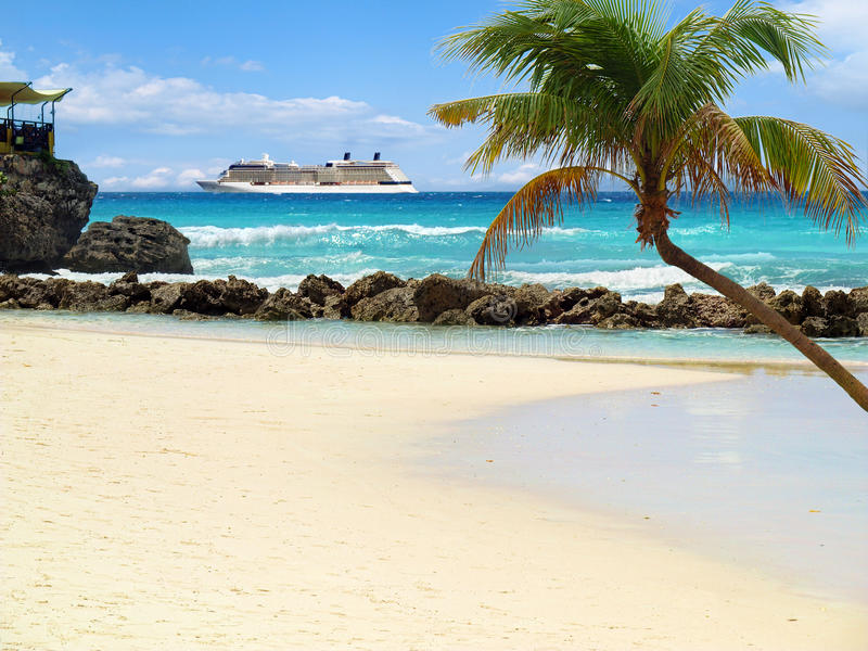 Download Beach With Palm Tree Stock Image - Image: 25265301