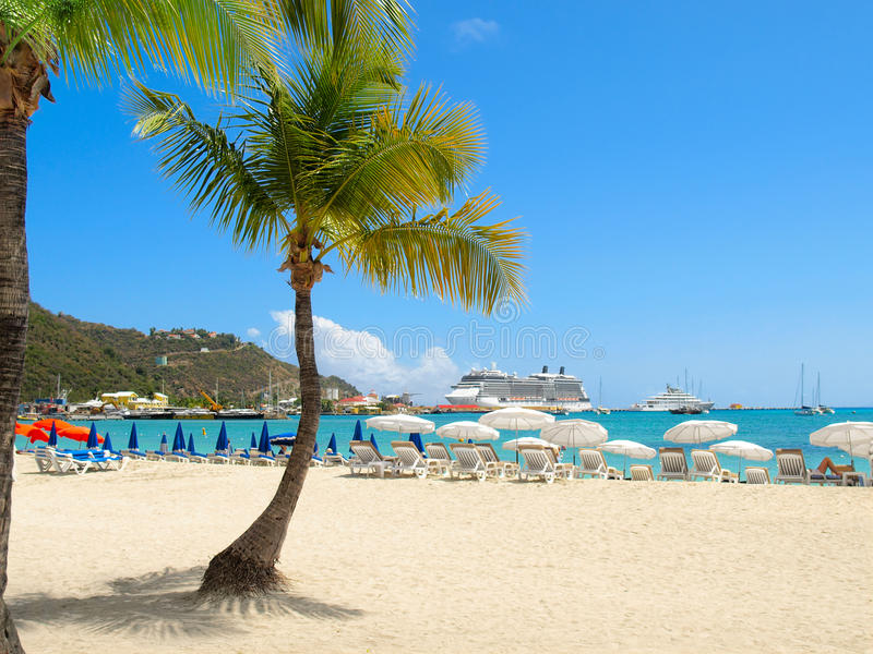 Download Beach with Palm Tree stock image. Image of destination - 28307081