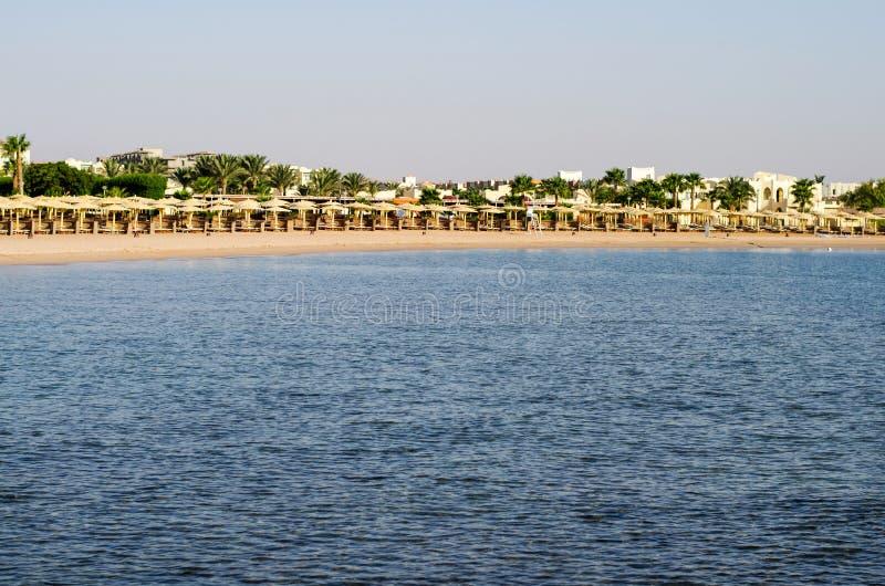 Beach and palm trees. stock photos