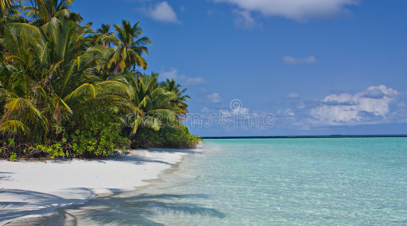 Download Beach And Palm Trees Under The Sun Stock Image - Image: 9348789