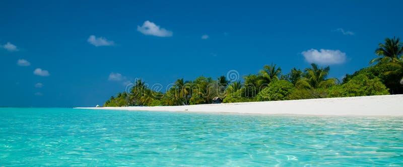 Download Beach panorama stock photo. Image of hawaii, nature, resort - 22238628