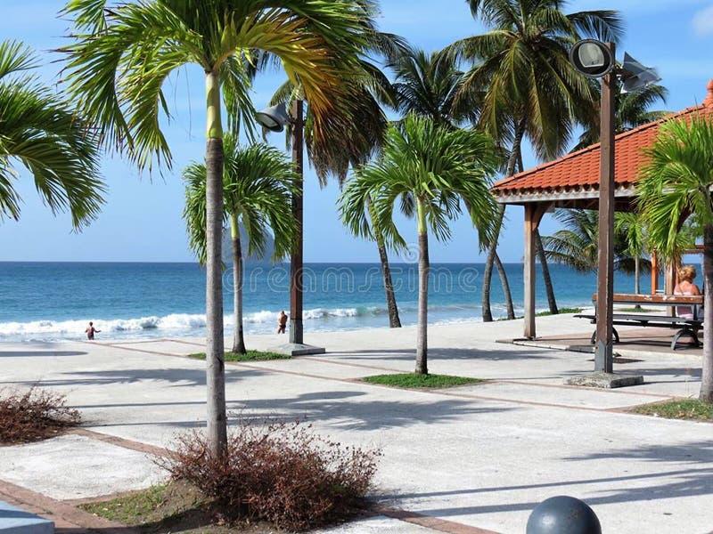 Beach paradise stock images