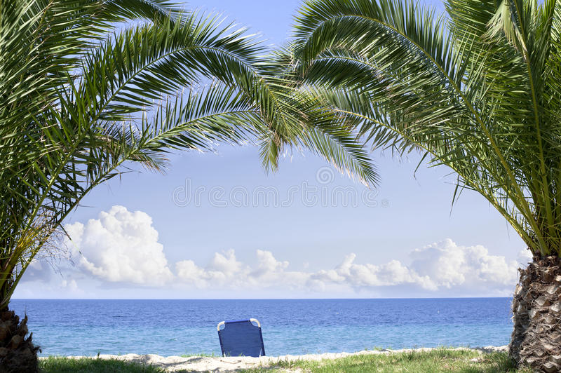 Beach Paradise Palm Trees Royalty Free Stock Images