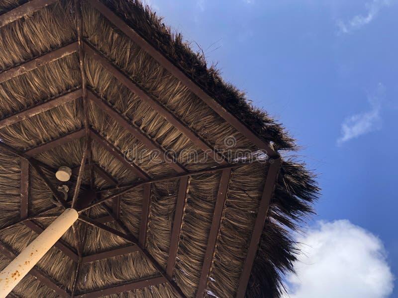 Beach Parasol mot en ljusblå himmel royaltyfri foto