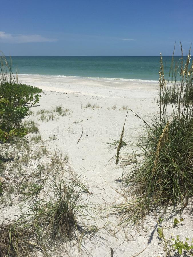 Beach Path stock image