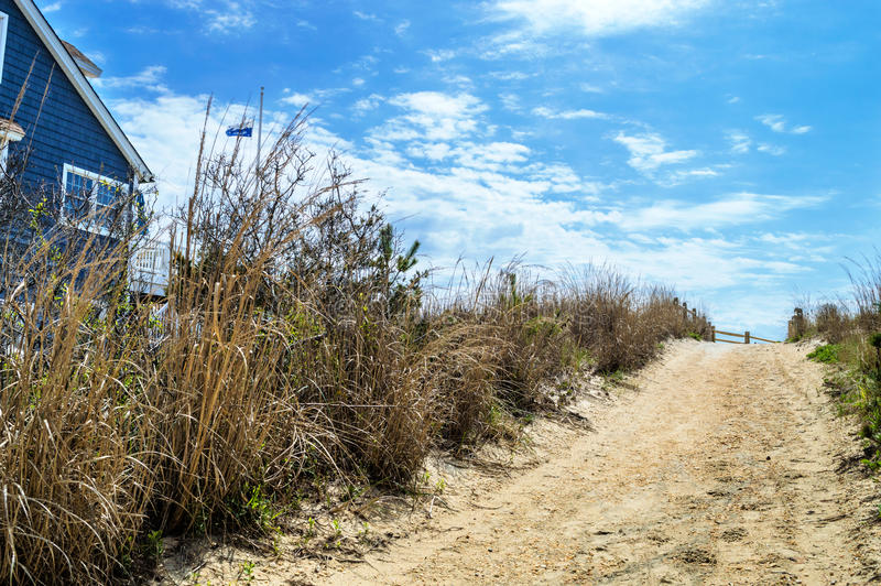 Download Beach Pathway Surf City stock image. Image of dunes, jersey - 40407725
