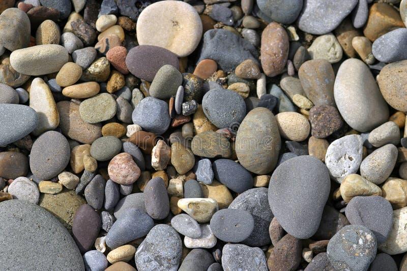 Download Beach Pebbles stock image. Image of shoreline, rocks, shore - 112777