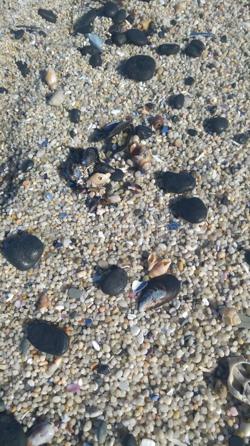 Beach pebbles and shells royalty free stock image