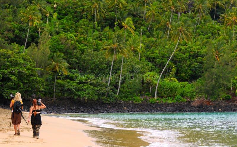 Beach photographers stock photos