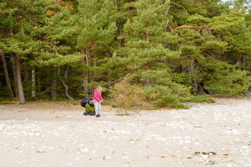 Beach photographers stock photography