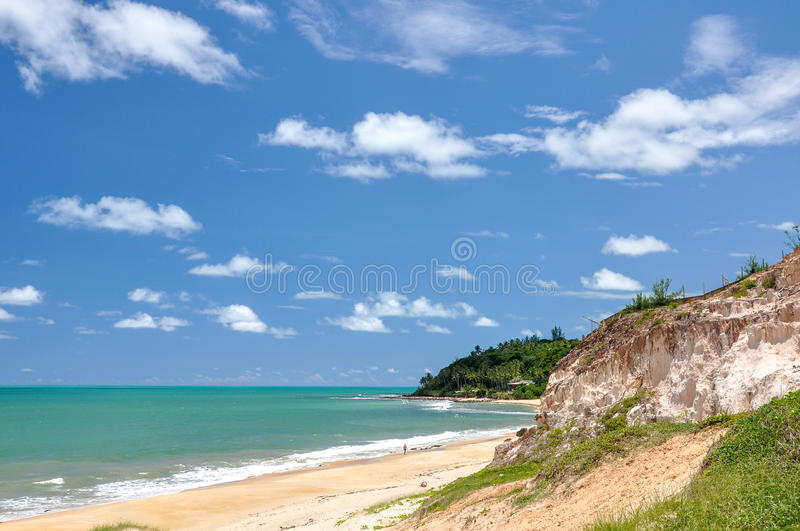 Beach of Pipa, Natal (Brazil). Beach of Pipa, with sand dunes and palms in background, Natal (Brazil royalty free stock images