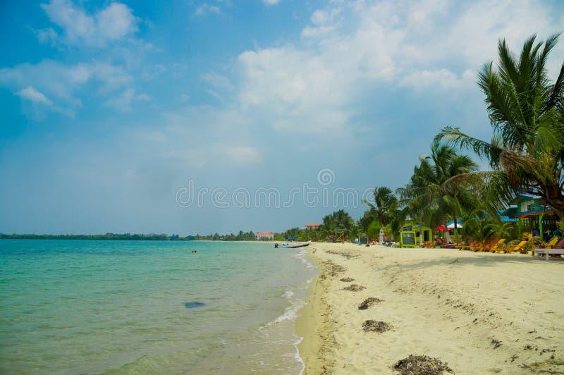 Beach placencia belize royalty free stock photo