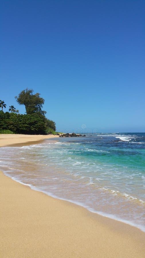 Beach please. Tunnels haha hawaii kauai aloha ocean sea water pacific summer snorkel bluewater royalty free stock image