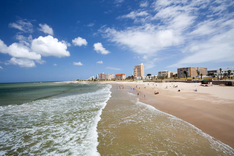 Download Beach of Port Elizabeth stock image. Image of saltwater - 22836263