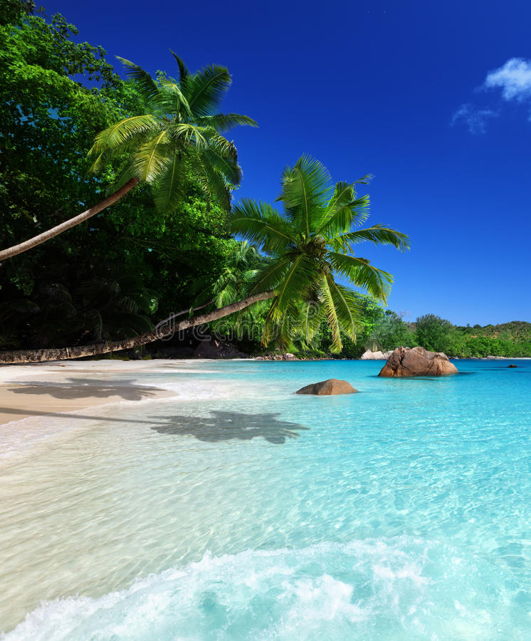 Beach Island: Beach At Praslin Island Stock Photo. Image Of Indian