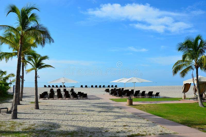 Download Beach ready stock image. Image of chairs, wedding, summer - 21094849