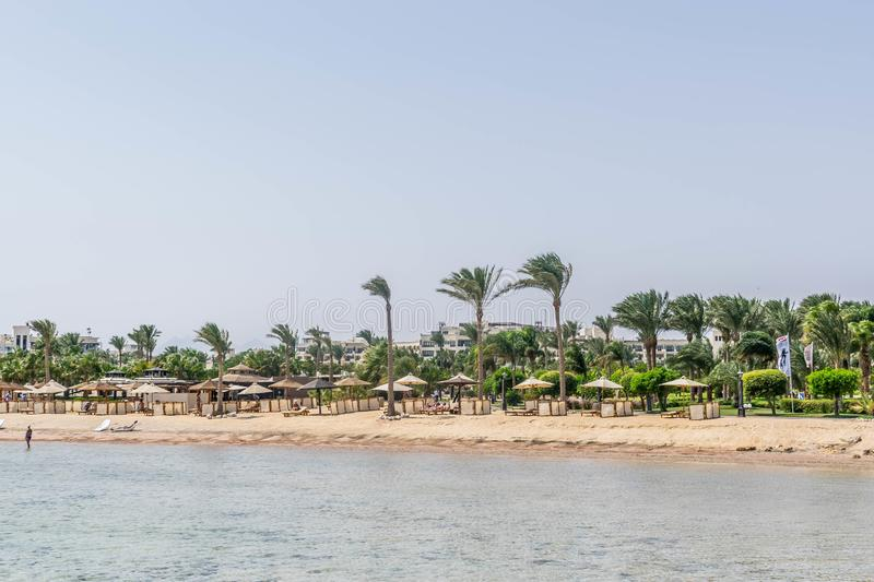 Beach of five star hotel in Egypt stock photo