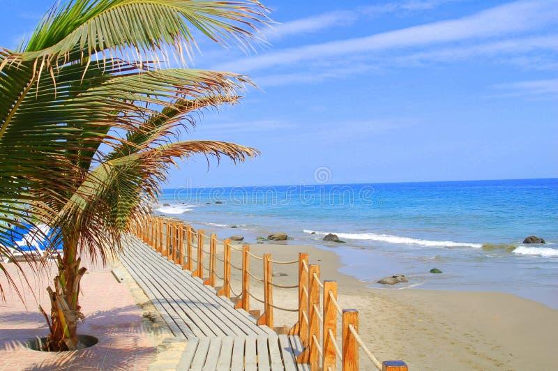 Download Beach resort stock image. Image of swimming, resort, break - 11891815