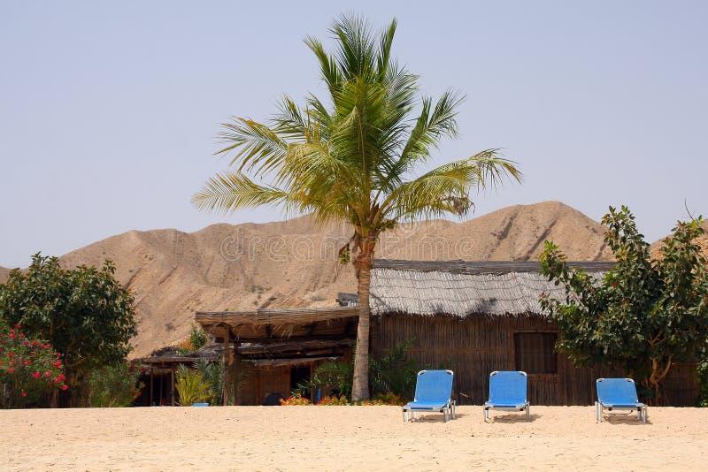 Download Beach resort stock image. Image of fantasy, beach, ocean - 21864129
