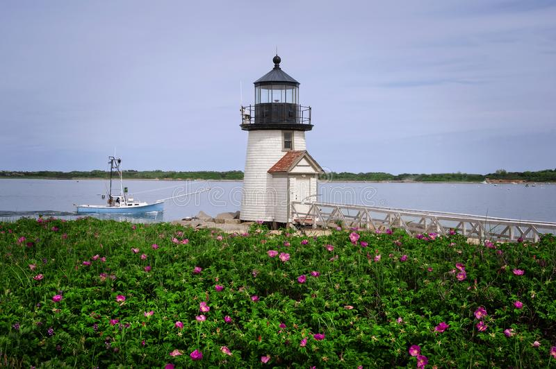 Beach Roses by Natucket Island Lighthouse Guiding Fishing Boat royalty free stock photo