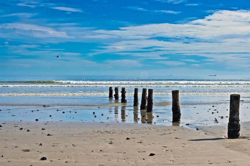 Beach with row of posts royalty free stock photo