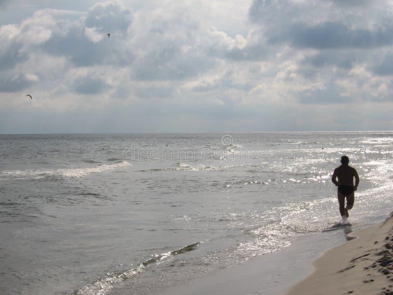 Download Beach runner stock photo. Image of cloud, green, summer - 215790