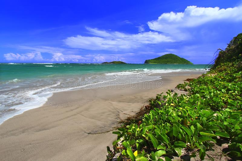 Beach on Saint Lucia stock image