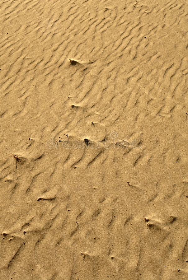 Download Beach sand detail stock photo. Image of dirty, backdrop - 7502554