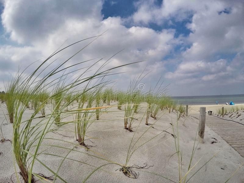 Beach with sand dunes, ocean in background royalty free stock photos