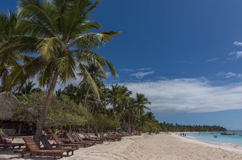 Saona island. At the beach on the Saona island in Dominican Republic royalty free stock photo