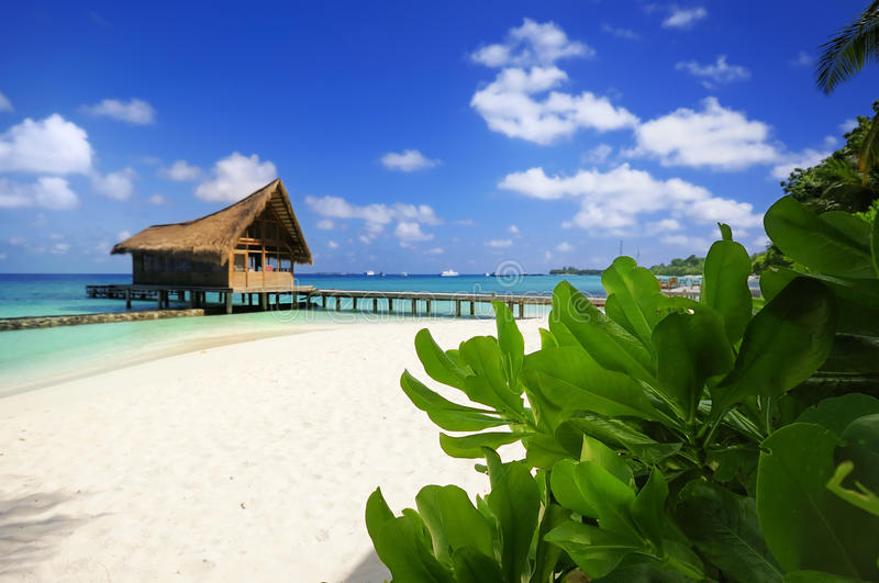 Download Beach scene stock photo. Image of hotel, beautiful, beach - 12667180