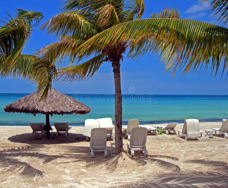 Beach Scene. Resort beach scene shaded with breezy palm trees royalty free stock photos