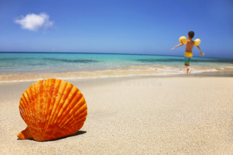 Beach Scene royalty free stock photography