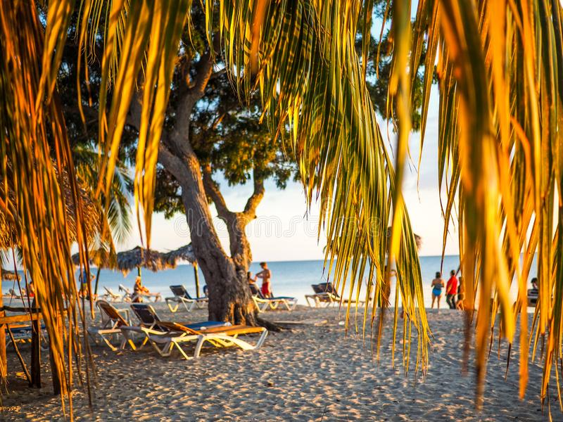 Framed beach scene at sunset. Beach scene near trinidad, cuba, framed by palm leaves at sunset stock image