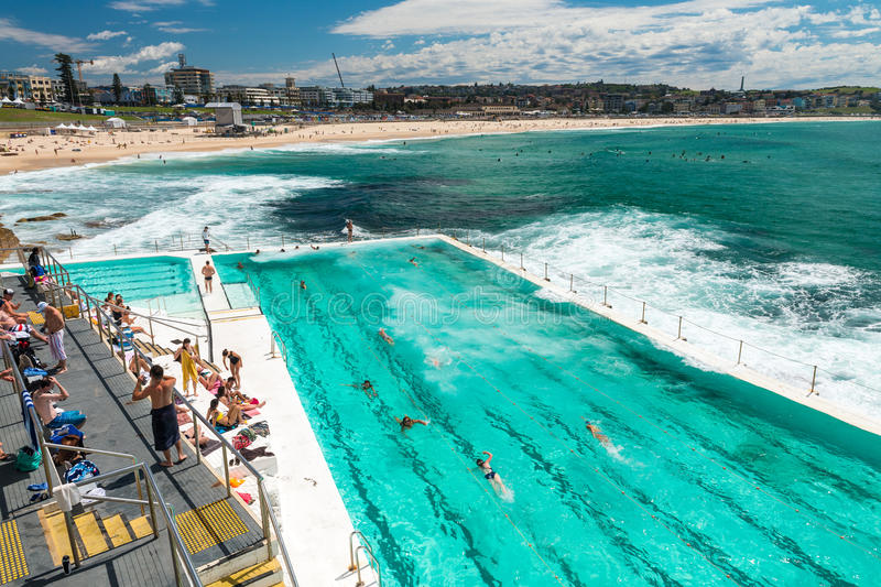 Beach scene rock swimming pools overlooking tasman sea in bondi editorial image image of - Swimmingpool aus paletten ...