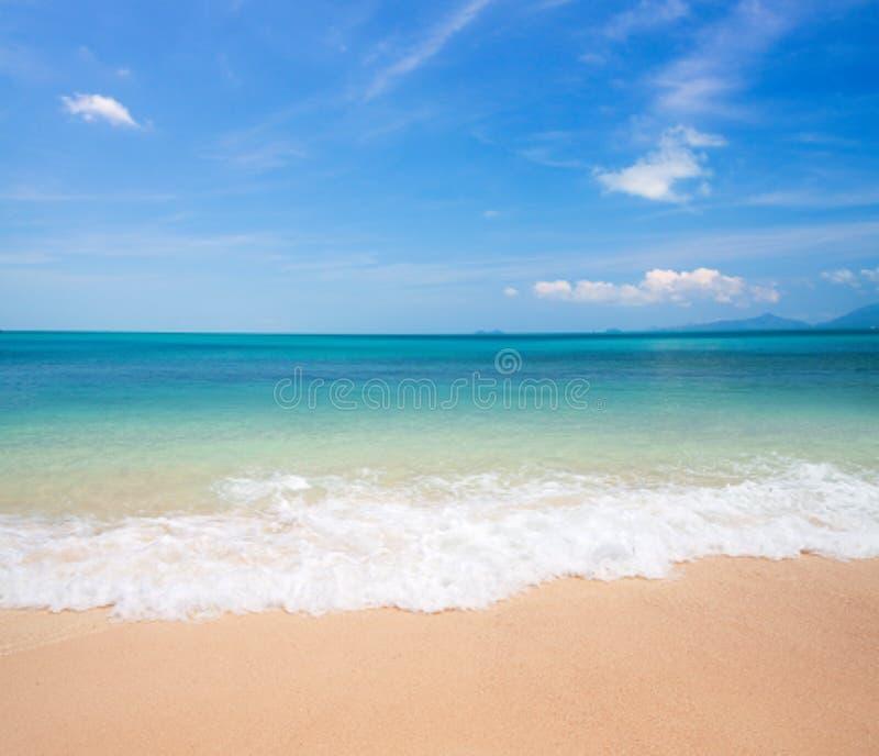 Beach and sea royalty free stock photo