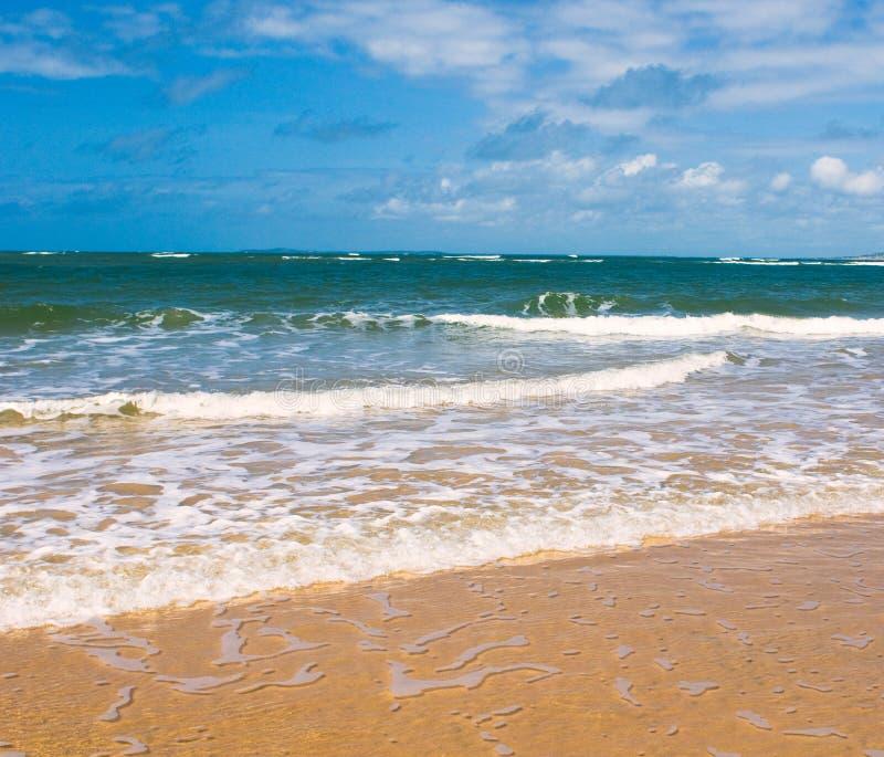 Download Beach, Sea And Deep Blue Sky Stock Photo - Image: 6849110