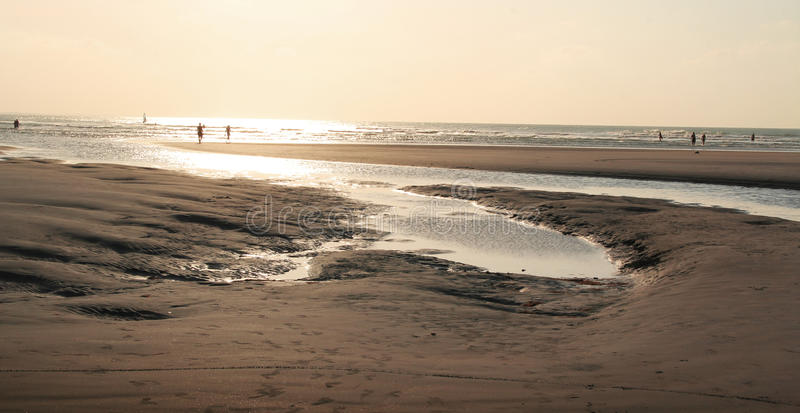 Download Beach in sepia stock photo. Image of beach, tranquil - 29331164
